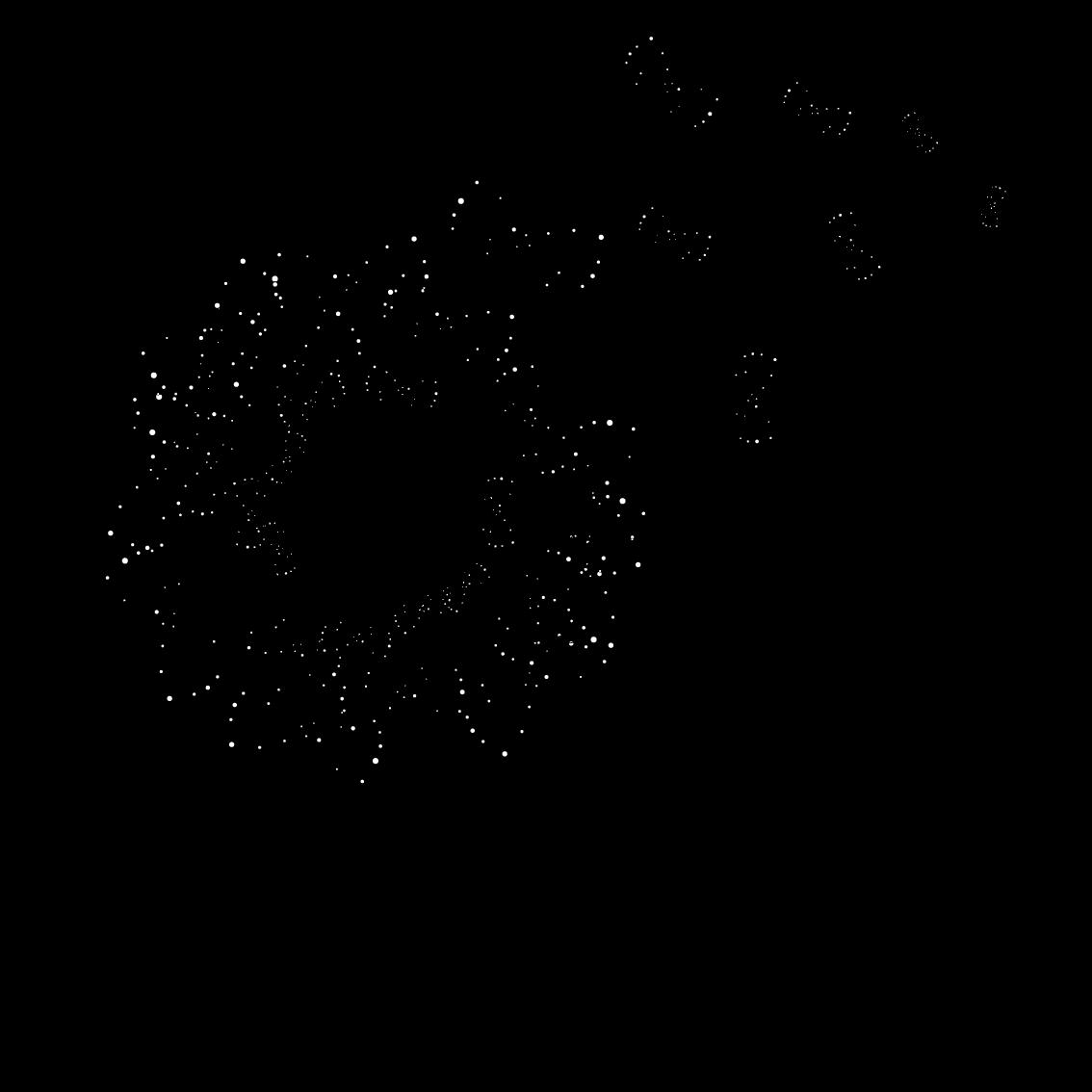 logo pan di coccole quadrato trasparente